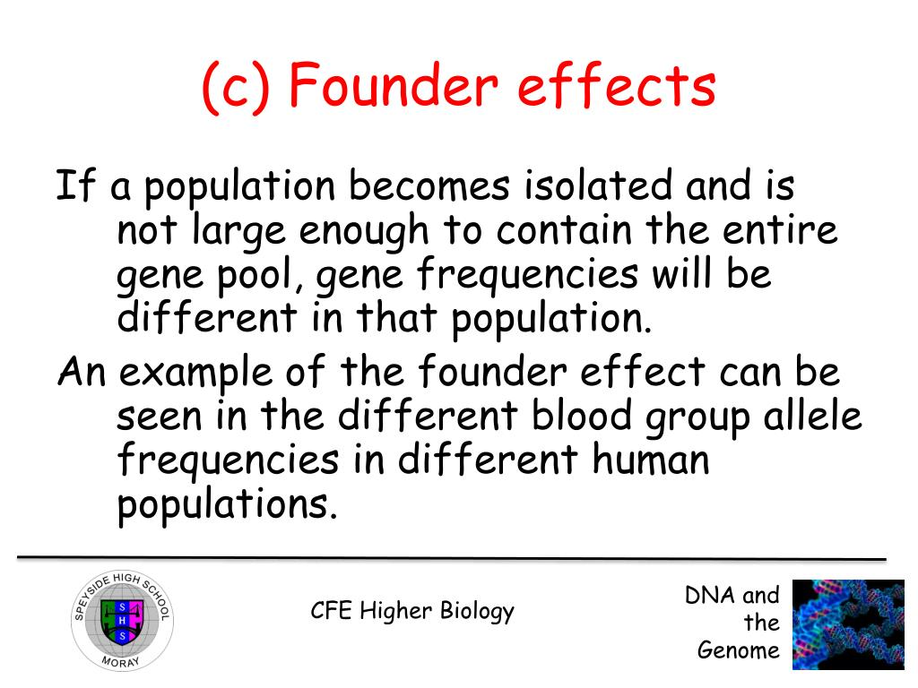 founder effect example in humans