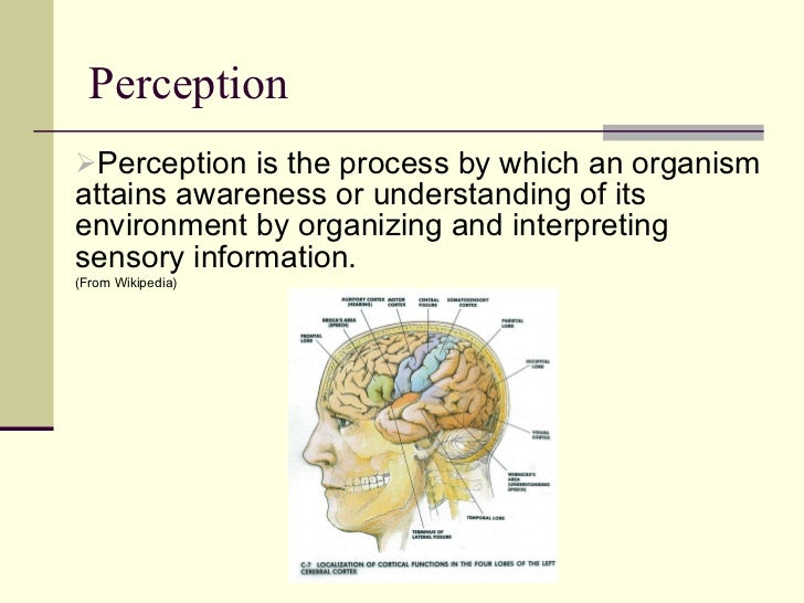 example of perception in communication