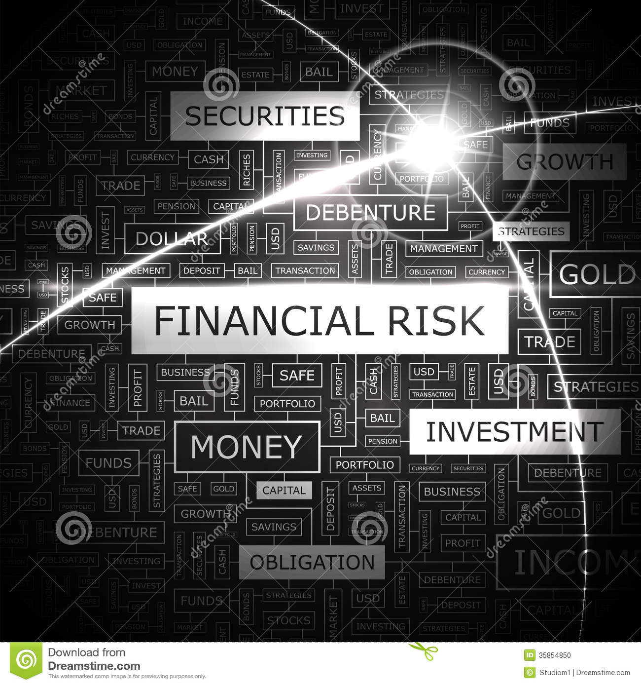 financial risk management plan example
